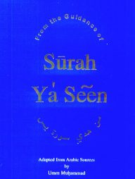 From-the-Guidance-of-Surah-Ya'-Seen